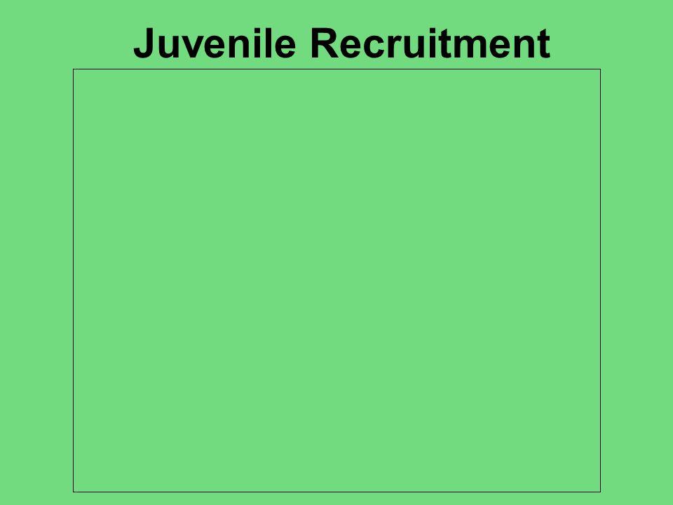 Juvenile Recruitment