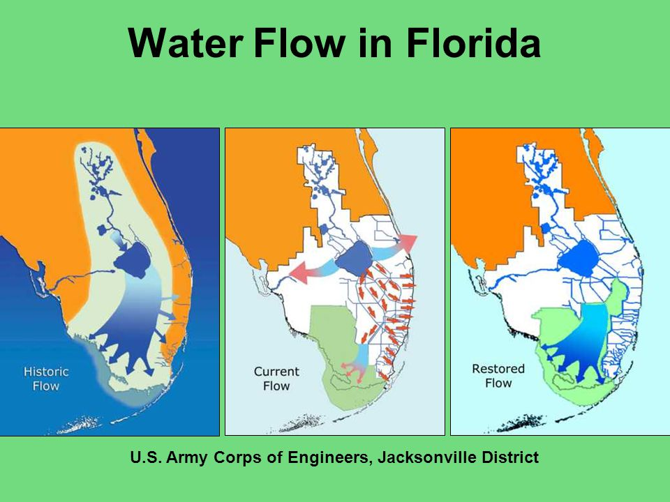 Comprehensive Everglades Restoration Plan (CERP) CERP implemented as a means of reinitiating natural freshwater flow to both coasts of south Florida Monitoring component of CERP addresses impacts of changed FW flow on the flora and fauna Eastern oyster chosen as a target species for CERP