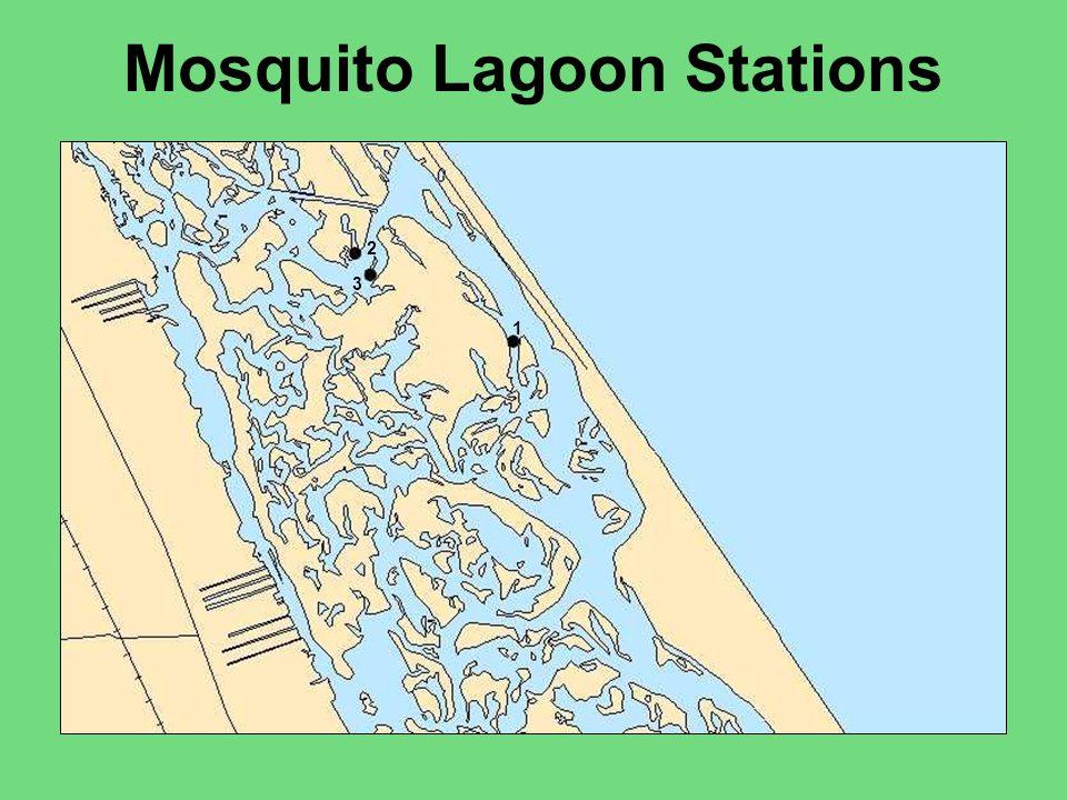 Summary Mosquito LagoonSt.