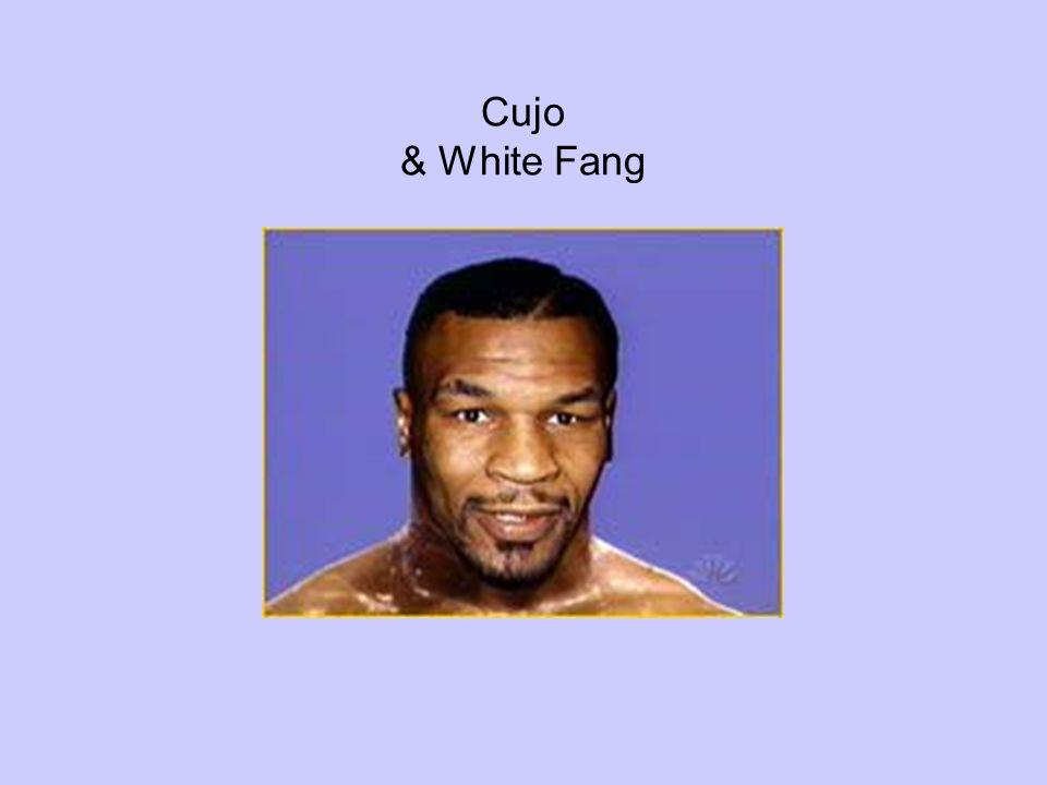Cujo & White Fang