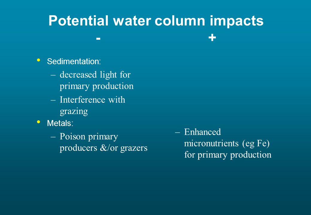 Potential water column impacts - + Sedimentation: –decreased light for primary production –Interference with grazing Metals: –Poison primary producers &/or grazers –Enhanced micronutrients (eg Fe) for primary production