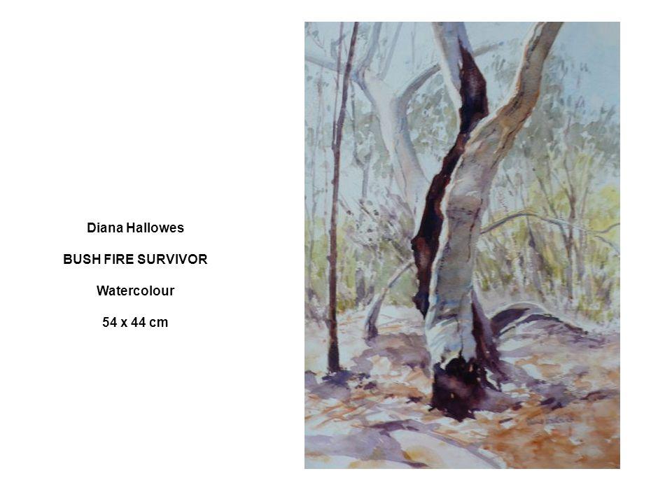 Diana Hallowes BUSH FIRE SURVIVOR Watercolour 54 x 44 cm