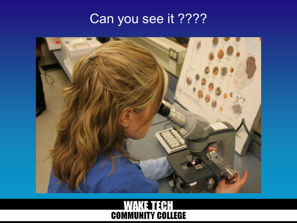 WAKE TECH COMMUNITY COLLEGE What are you looking for?