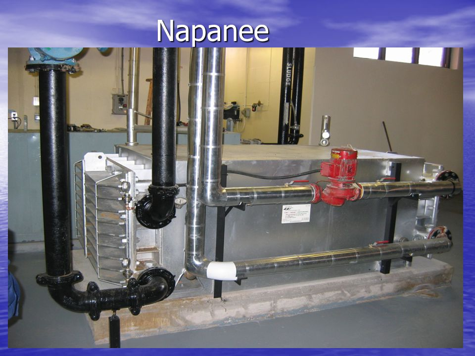Napanee Napanee