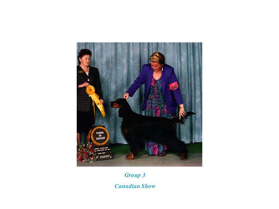 6-15-96 Group 4 Judge: Mrs. Rosalie Anderson Handler: Jennifer Gabriel