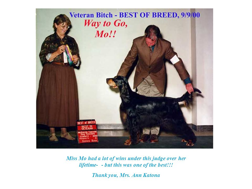 8-26-00 – GSCA Specialty Best Veteran & BOS Judge: Mrs. Betty Stites