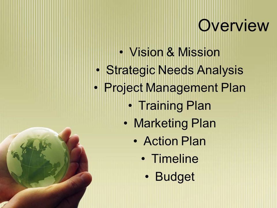 Overview Vision & Mission Strategic Needs Analysis Project Management Plan Training Plan Marketing Plan Action Plan Timeline Budget