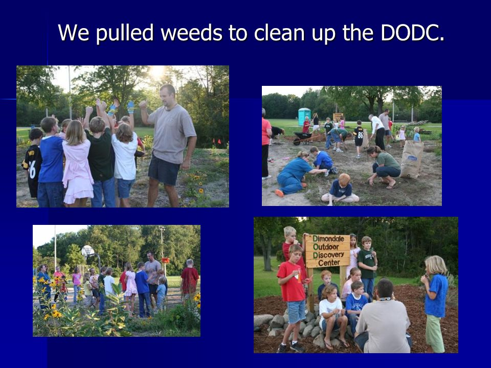 We pulled weeds to clean up the DODC.