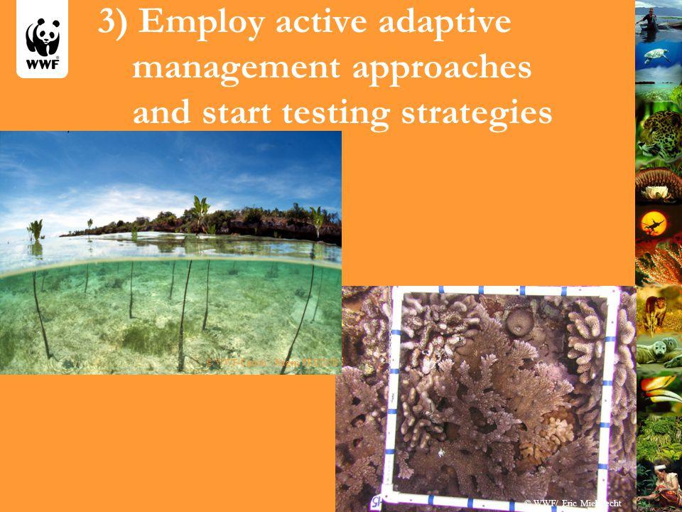 3) Employ active adaptive management approaches and start testing strategies © WWF/ Eric Mielbrecht © WWF-Canon / Jürgen FREUND