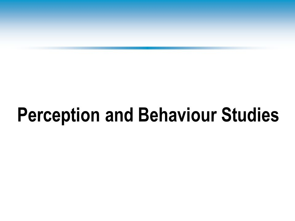 Perception and Behaviour Studies