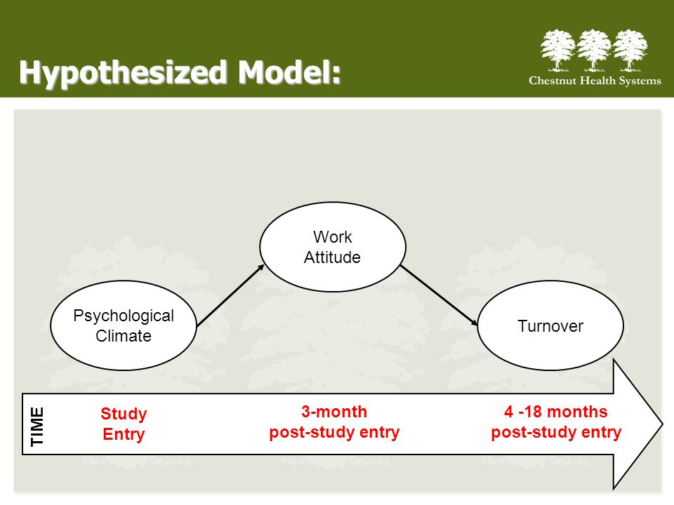 Hypothesized Model: Study Entry 3-month post-study entry 4 -18 months post-study entry TIME Psychological Climate Turnover Work Attitude