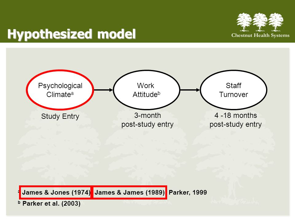 Hypothesized model Psychological Climate a Work Attitude b Staff Turnover Study Entry 3-month post-study entry 4 -18 months post-study entry a James & Jones (1974); James & James (1989); Parker, 1999 b Parker et al.
