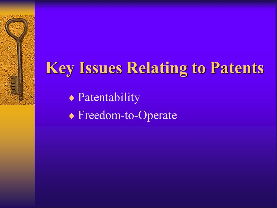 Key Issues Relating to Patents  Patentability  Freedom-to-Operate