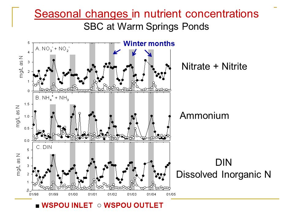 Nitrate + Nitrite Ammonium DIN Dissolved Inorganic N Seasonal changes in nutrient concentrations SBC at Warm Springs Ponds ■ WSPOU INLET ○ WSPOU OUTLET Winter months