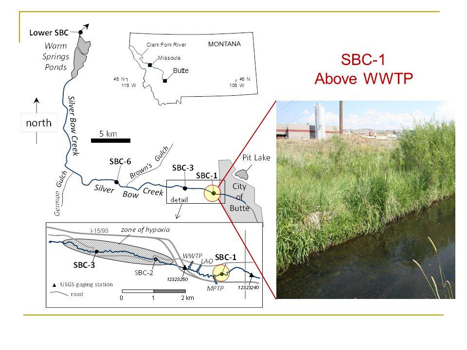 WWTP discharge