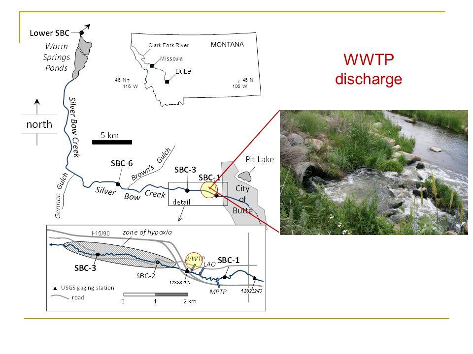 SBC-3 3 km below WWTP