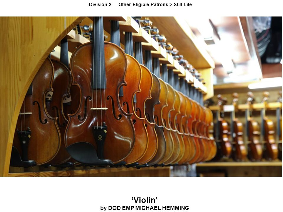 'Violin' by DOD EMP MICHAEL HEMMING Division 2 Other Eligible Patrons > Still Life