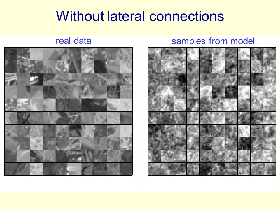 Without lateral connections real data samples from model