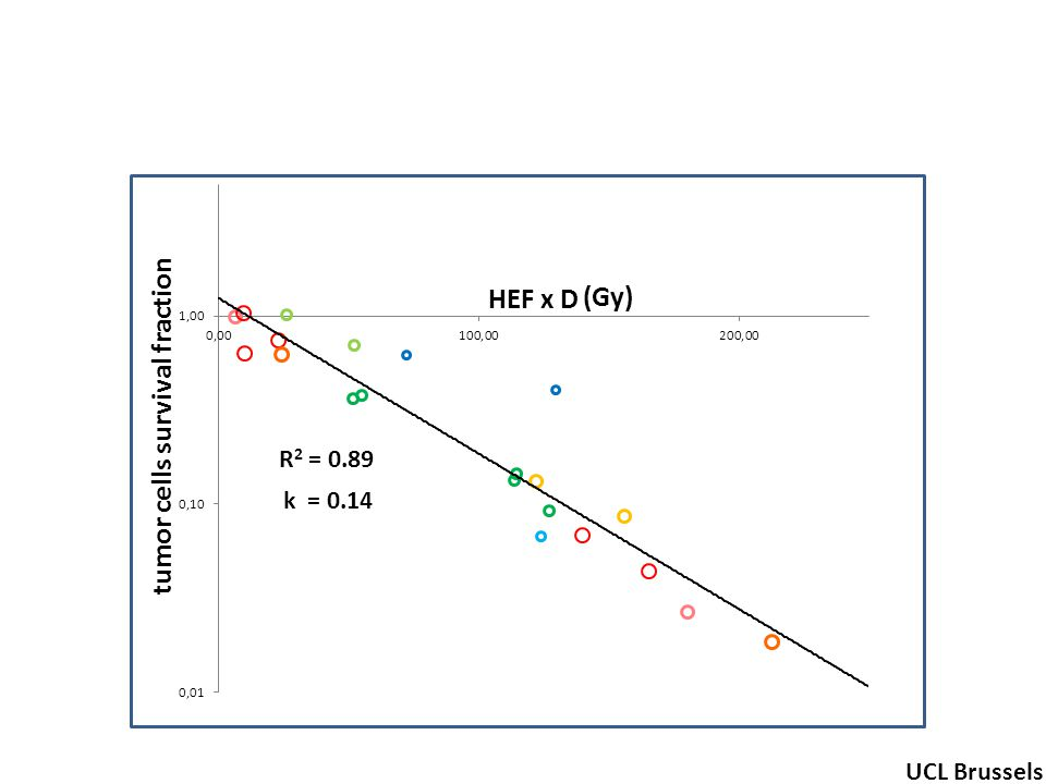R 2 = 0.89 tumor cells survival fraction (Gy) UCL Brussels k = 0.14 HEF x D