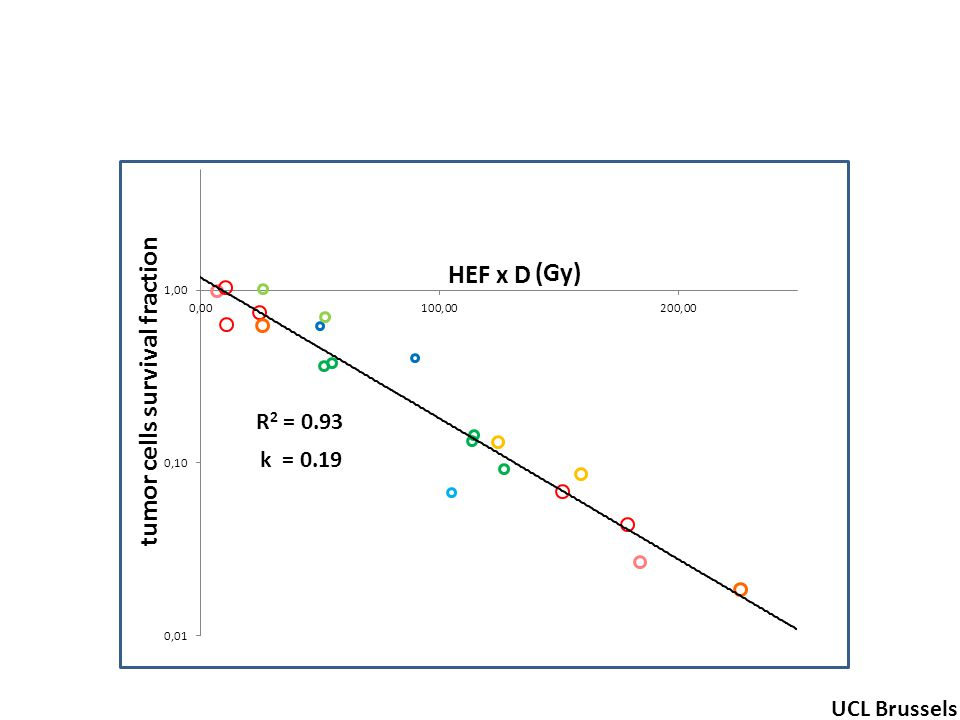 R 2 = 0.93 tumor cells survival fraction (Gy) UCL Brussels k = 0.19 HEF x D