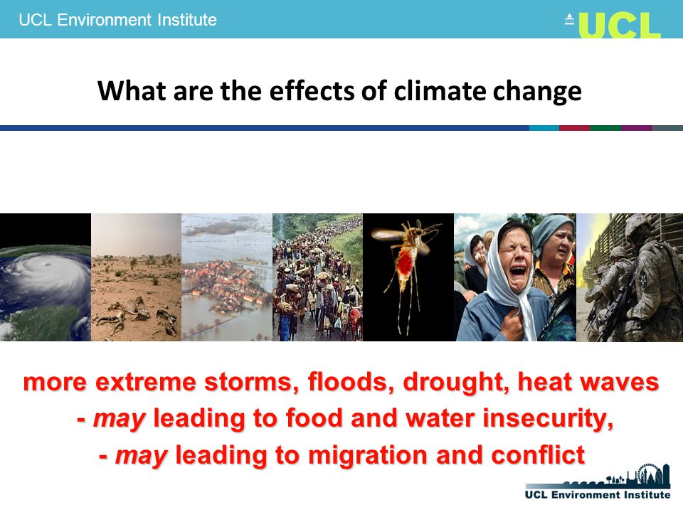 UCL Environment Institute more extreme storms, floods, drought, heat waves - may leading to food and water insecurity, - may leading to food and water insecurity, - may leading to migration and conflict What are the effects of climate change