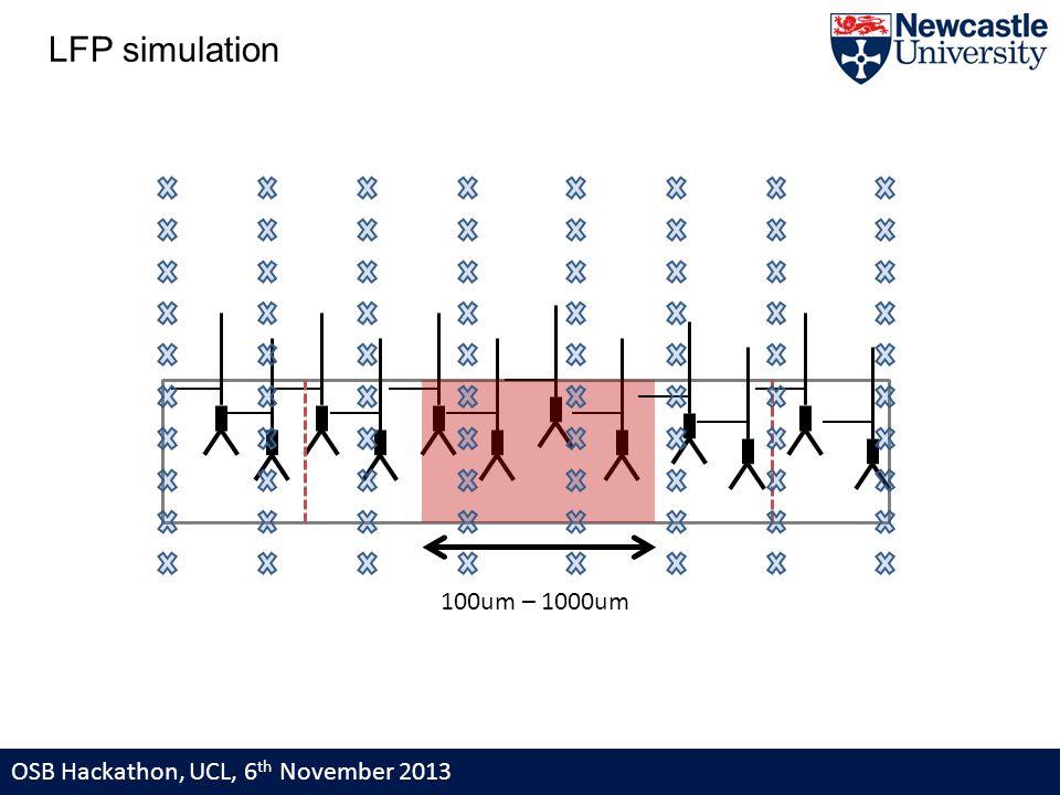 LFP simulation 100um – 1000um