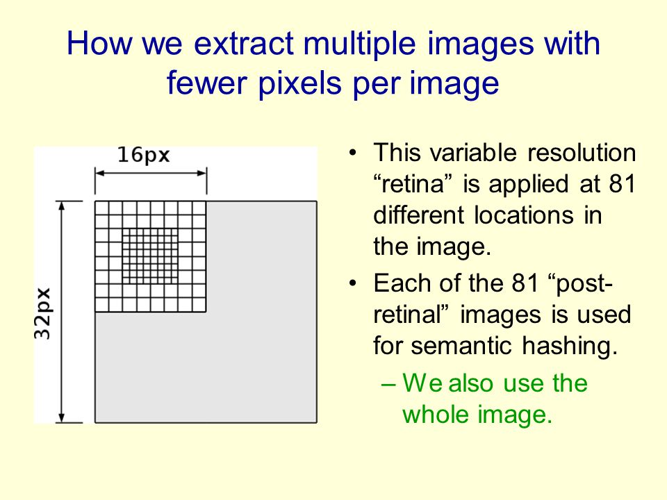 How we extract multiple images with fewer pixels per image This variable resolution retina is applied at 81 different locations in the image.