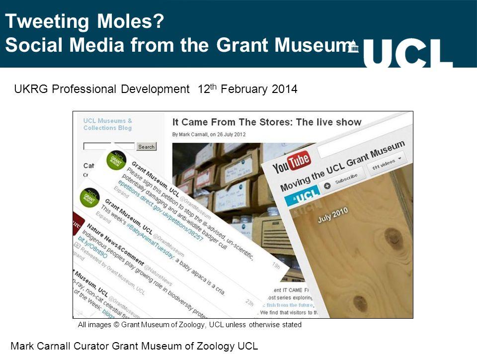 Tweeting Moles.