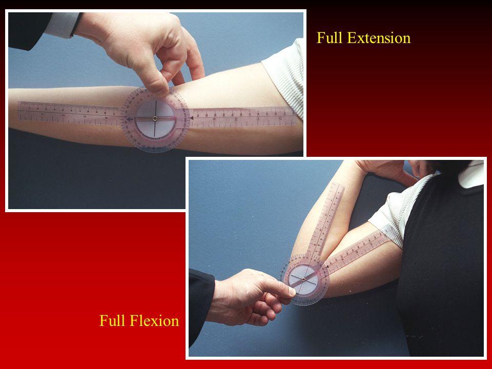 Full Extension Full Flexion