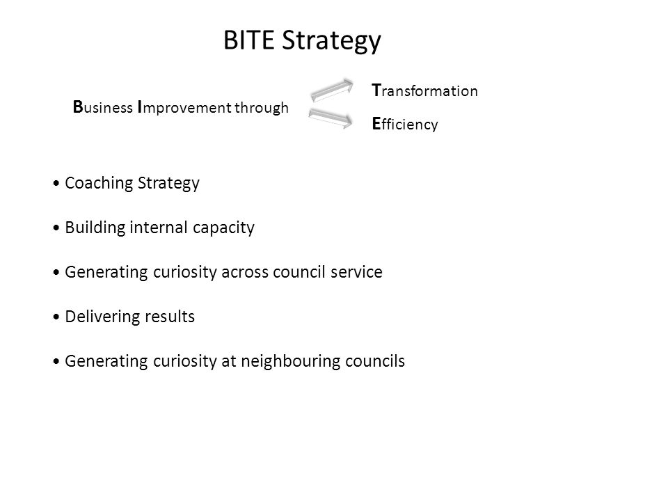 BITE Strategy B usiness I mprovement through T ransformation E fficiency Coaching Strategy Building internal capacity Generating curiosity across council service Delivering results Generating curiosity at neighbouring councils