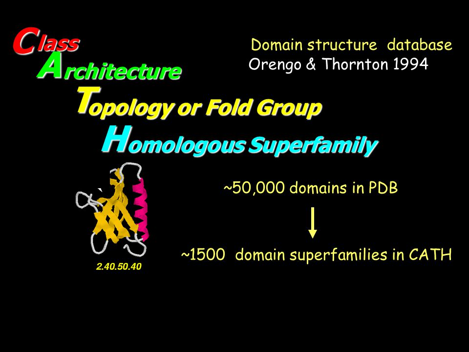 ~1500 domain superfamilies in CATH ~50,000 domains in PDB Domain structure database A T H lass rchitecture opology or Fold Group omologous Superfamily