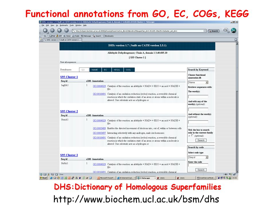 Functional annotations from GO, EC, COGs, KEGG DHS:Dictionary of Homologous Superfamilies http://www.biochem.ucl.ac.uk/bsm/dhs