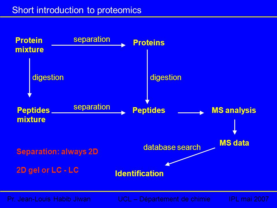 Short introduction to proteomics Protein mixture digestion Peptides mixture separation Proteins PeptidesMS analysis MS data Identification database search digestion Separation: always 2D 2D gel or LC - LC Pr.