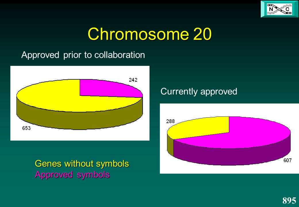 Chromosome 20 Genes without symbols Approved symbols Approved prior to collaboration Currently approved 895