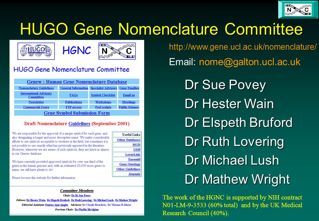 http://www.gene.ucl.ac.uk/nomenclature/ Email: nome@galton.ucl.ac.uk The work of the HGNC is supported by NIH contract N01-LM-9-3533 (60% total) and by the UK Medical Research Council (40%).