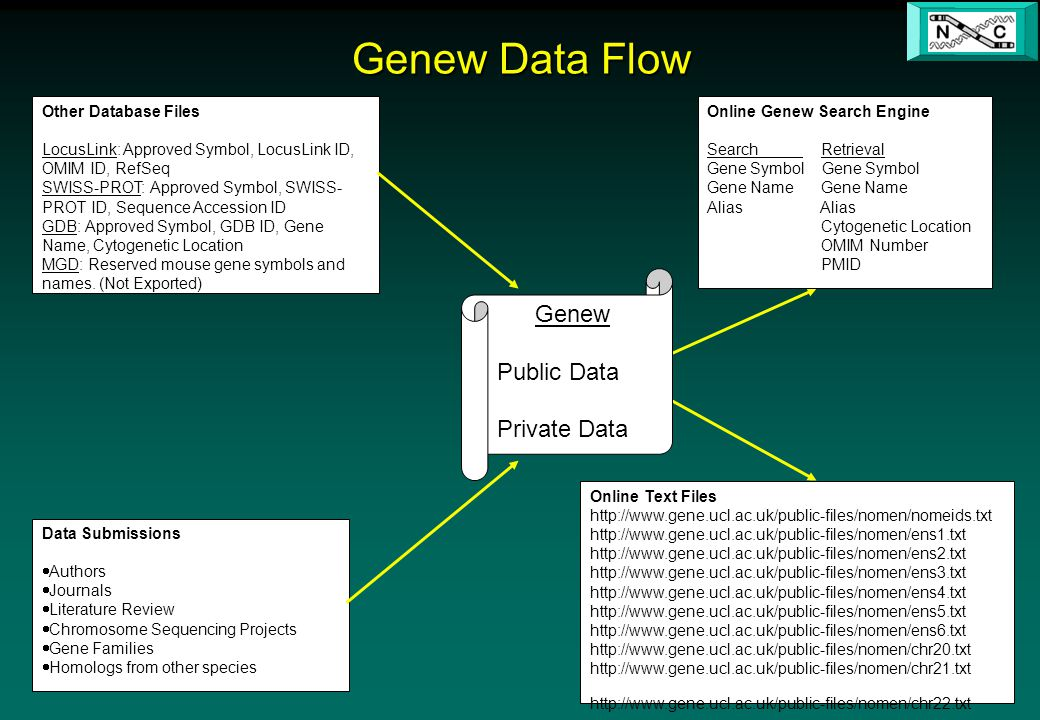 Genew Data Flow Other Database Files LocusLink: Approved Symbol, LocusLink ID, OMIM ID, RefSeq SWISS-PROT: Approved Symbol, SWISS- PROT ID, Sequence Accession ID GDB: Approved Symbol, GDB ID, Gene Name, Cytogenetic Location MGD: Reserved mouse gene symbols and names.