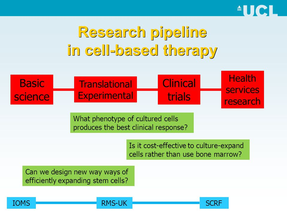 Research pipeline in cell-based therapy Basic science Translational Experimental Clinical trials Health services research What phenotype of cultured c