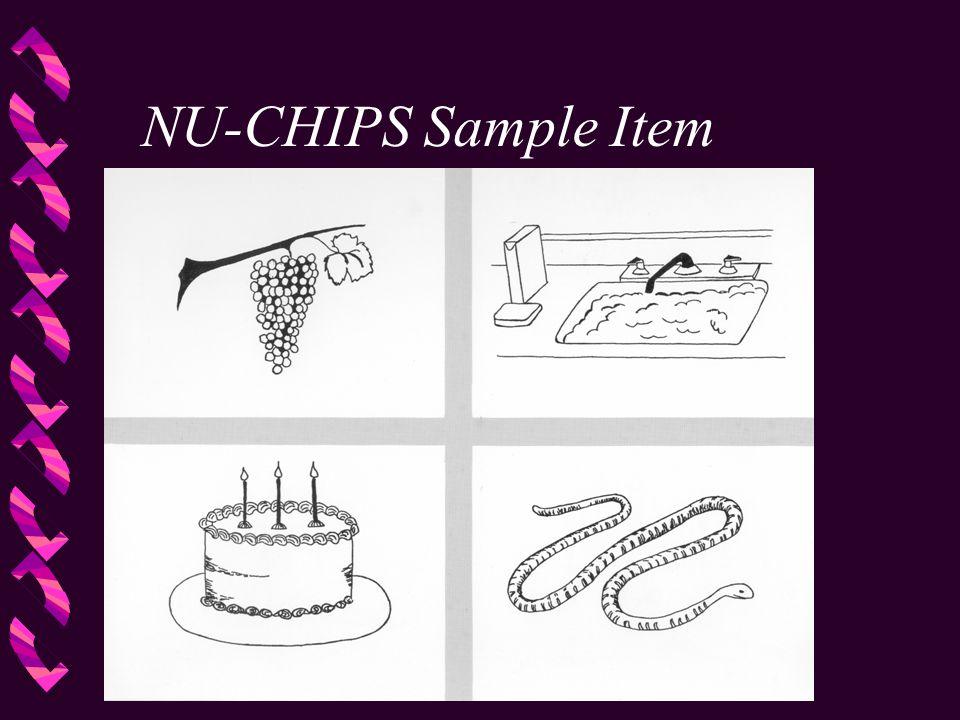 NU-CHIPS Sample Item