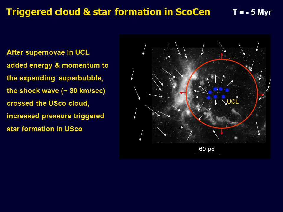 After supernovae in UCL added energy & momentum to the expanding superbubble, the shock wave (~ 30 km/sec) crossed the USco cloud, increased pressure triggered star formation in USco Triggered cloud & star formation in ScoCen T = - 5 Myr        60 pc UCL