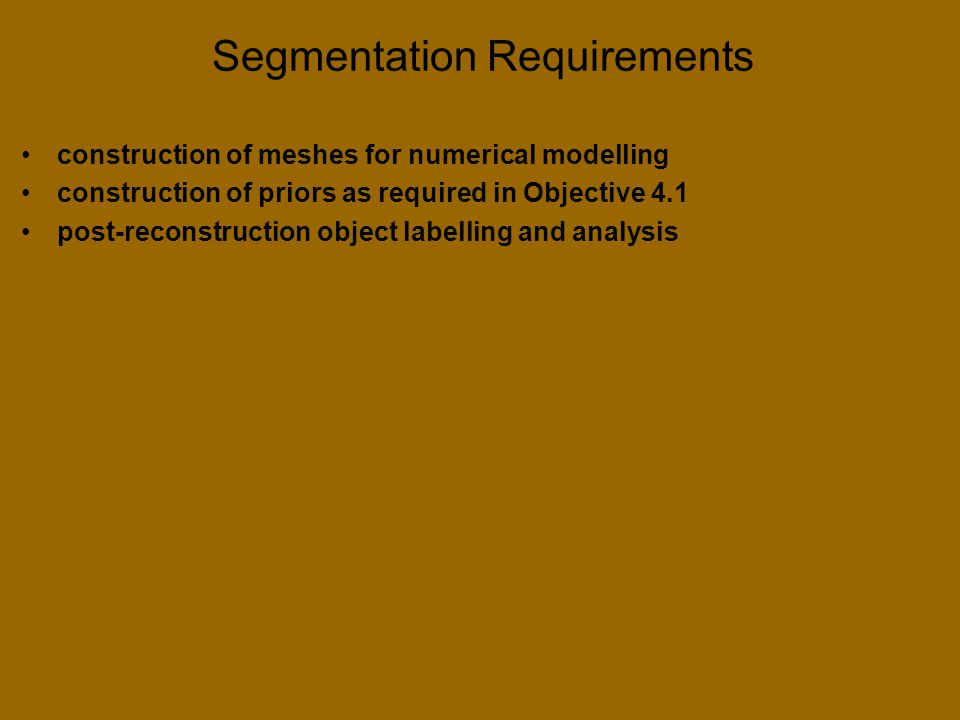 Segmentation Requirements construction of meshes for numerical modelling construction of priors as required in Objective 4.1 post-reconstruction object labelling and analysis