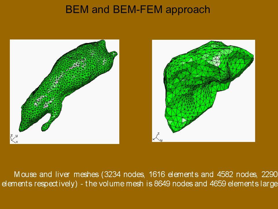 BEM and BEM-FEM approach