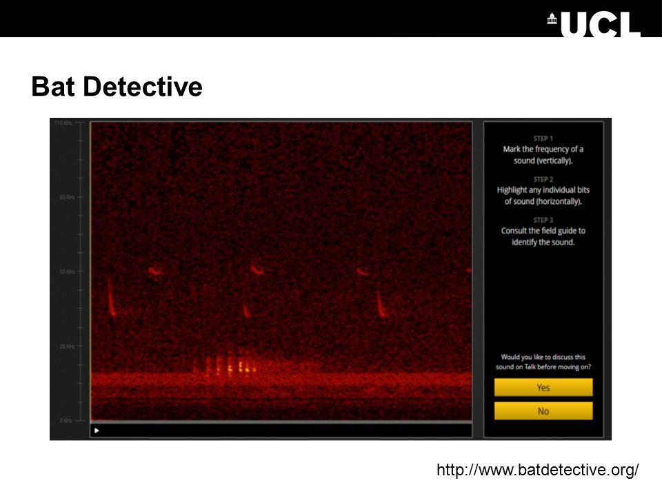 Bat Detective http://www.batdetective.org/