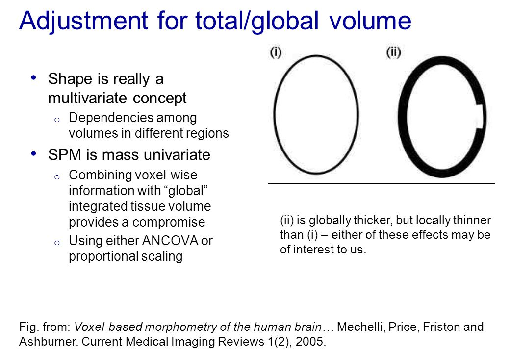 Adjustment for total/global volume Shape is really a multivariate concept o Dependencies among volumes in different regions SPM is mass univariate o C