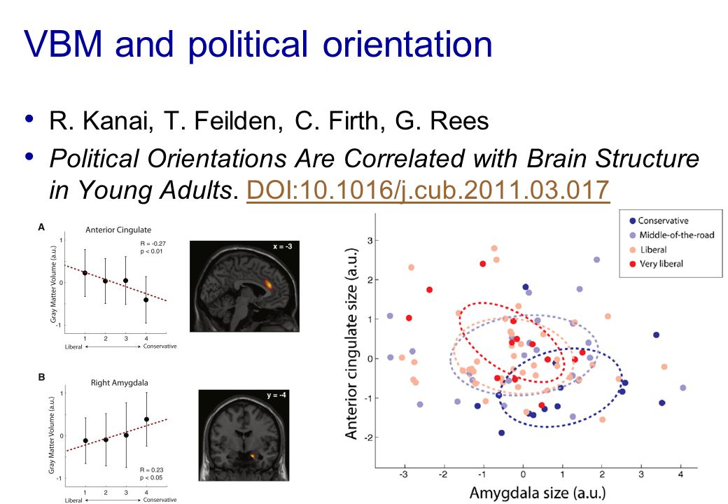 VBM and political orientation R. Kanai, T. Feilden, C. Firth, G. Rees Political Orientations Are Correlated with Brain Structure in Young Adults. DOI: