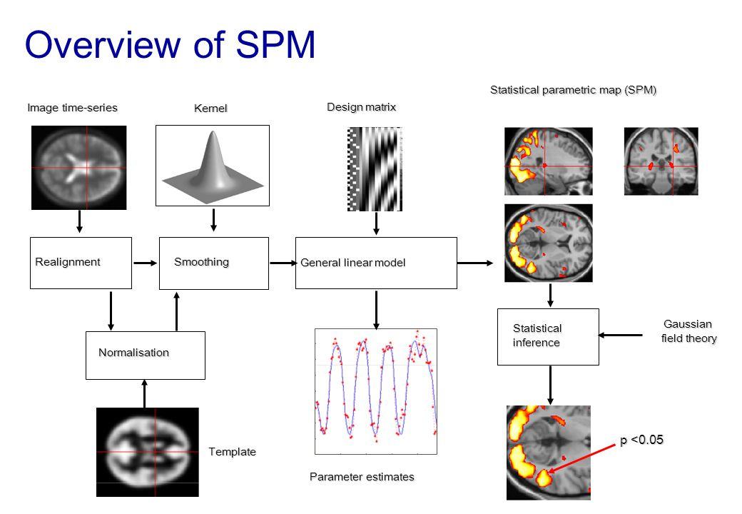RealignmentSmoothing Normalisation General linear model Statistical parametric map (SPM) Image time-series Parameter estimates Design matrix Template