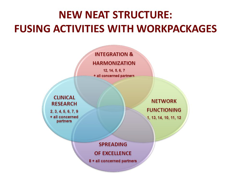 NEW NEAT STRUCTURE: FUSING ACTIVITIES WITH WORKPACKAGES INTEGRATION & HARMONIZATION 12, 14, 5, 6, 7 + all concerned partners NETWORK FUNCTIONING 1, 13, 14, 10, 11, 12 SPREADING OF EXCELLENCE 8 + all concerned partners CLINICAL RESEARCH 2, 3, 4, 5, 6, 7, 9 + all concerned partners
