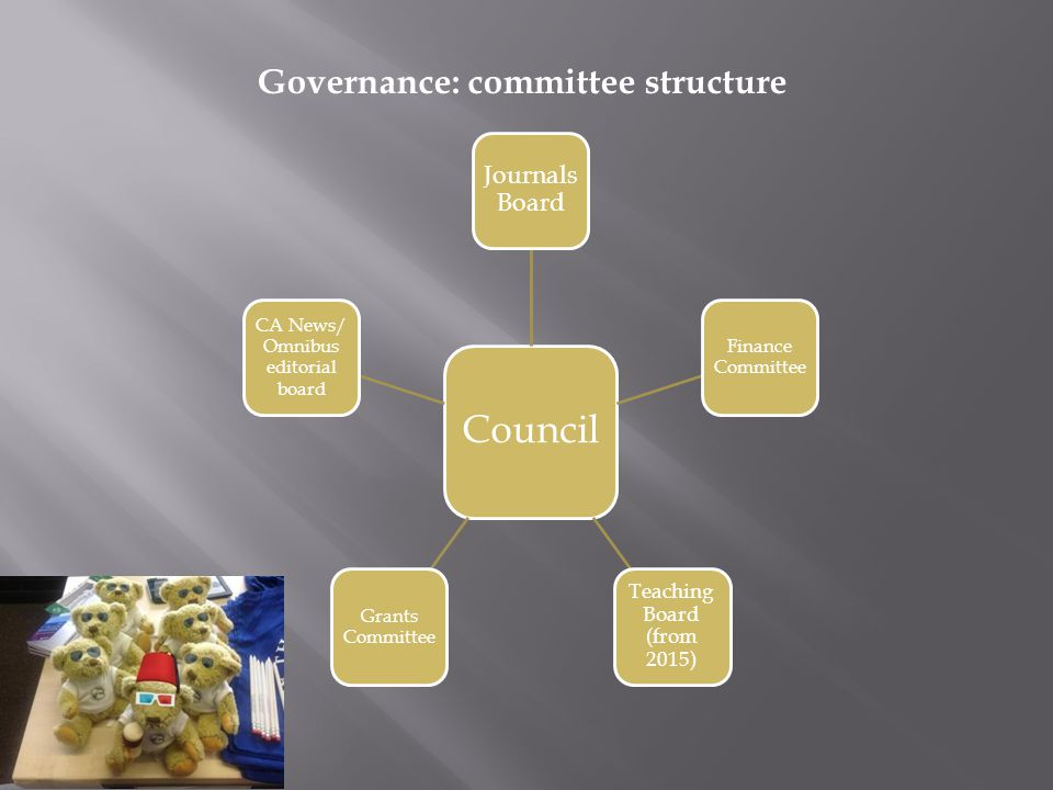 Council Journals Board Finance Committee Teaching Board (from 2015) Grants Committee CA News/ Omnibus editorial board Governance: committee structure