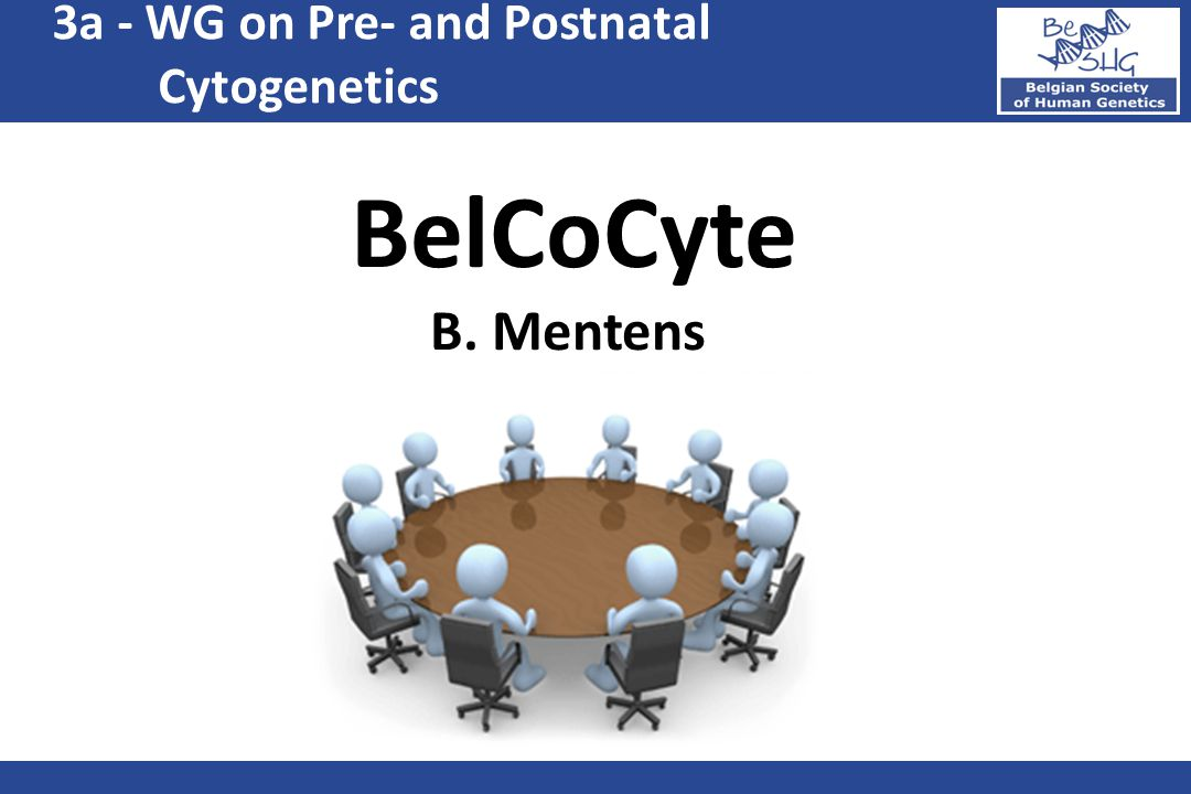 3a - WG on Pre- and Postnatal Cytogenetics BelCoCyte B. Mentens