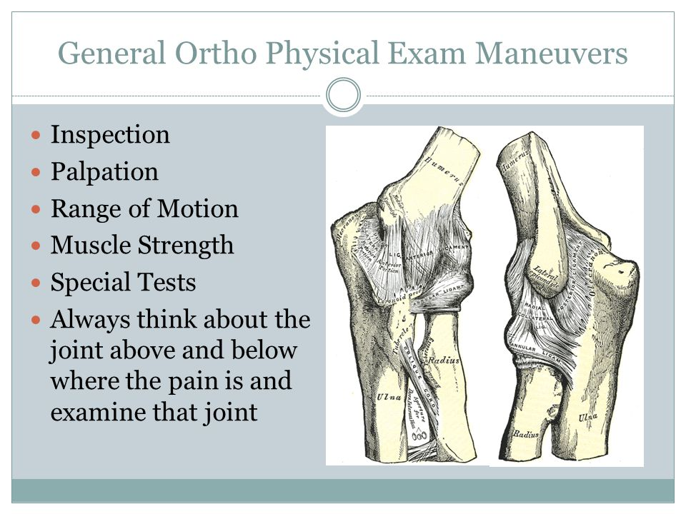 General Ortho Physical Exam Maneuvers Inspection Palpation Range of Motion Muscle Strength Special Tests Always think about the joint above and below where the pain is and examine that joint