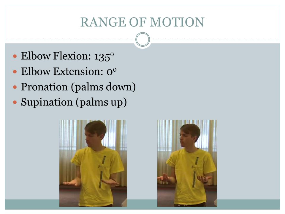 RANGE OF MOTION Elbow Flexion: 135 o Elbow Extension: 0 o Pronation (palms down) Supination (palms up)